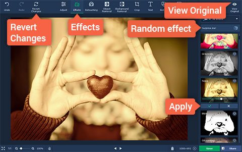 Applying Filters to Photos with Movavi Photo Editor